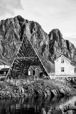 Lofoten Landscape 35