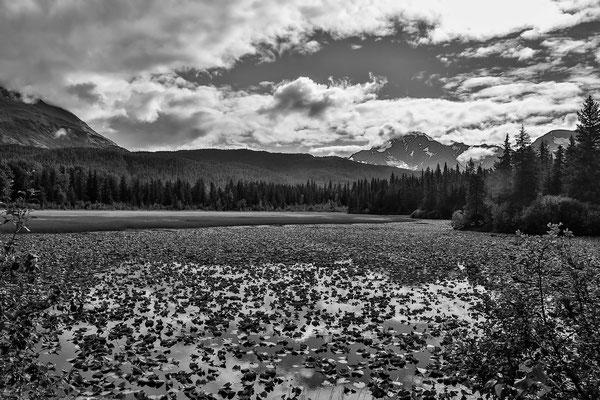 Die Landschaft auf der Rückfahrt nach Anchorage ist senstaionell