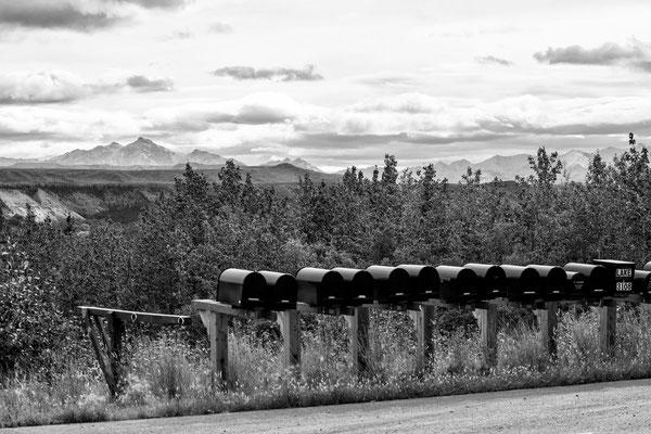 Denali Nationalpark Alaska - 2