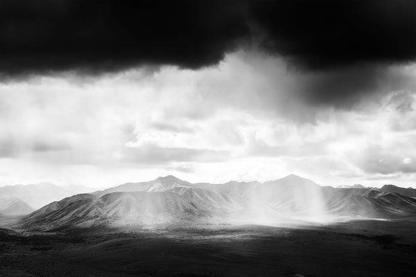 Denali Nationalpark Alaska - 23