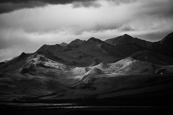 Denali Nationalpark Alaska - 17