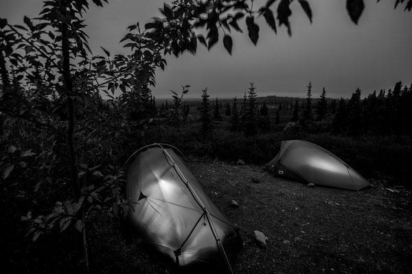 Denali Nationalpark Alaska - 53