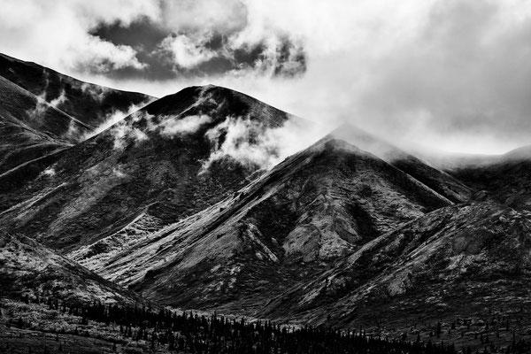 Denali Nationalpark Alaska - 27
