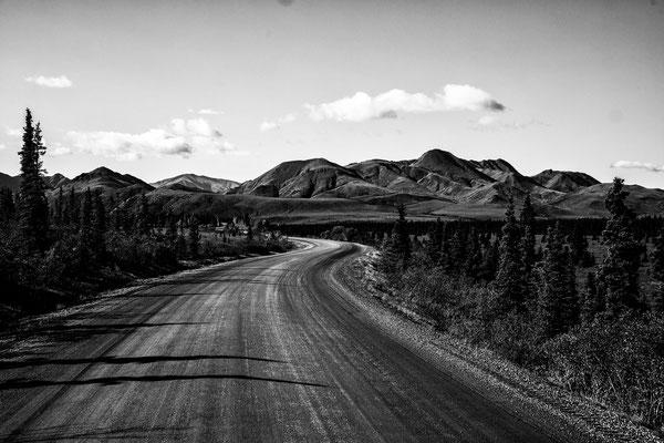 Denali Nationalpark Alaska - 33
