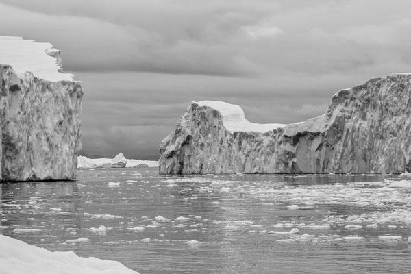 Disko Bay Ilullisat Grönland 12