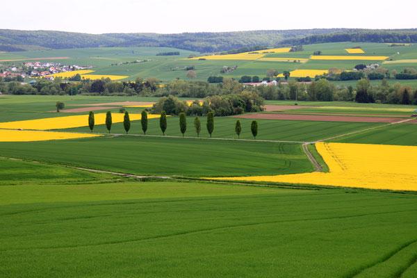 Grün und Gelb