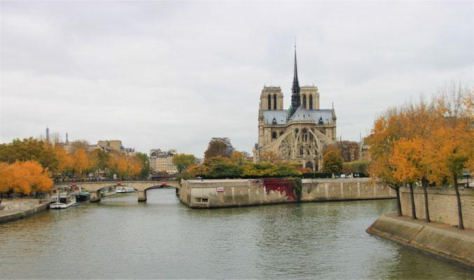 Notre Dame drei