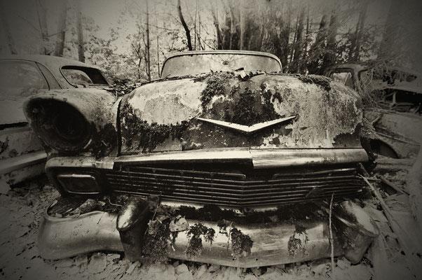 61 Rusty Chevy 58x77cm