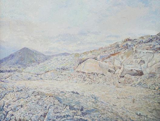 Pedregal de Arico.  Óleo sobre lienzo, 71,5 x 58,5 cm. Col. José Miguel Ramos Noda