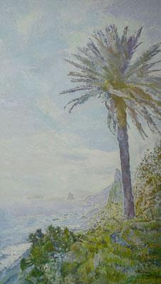 Palmera y Roques de Anaga, 1983.  Óleo sobre lienzo, 114 x 196 cm. Col. José Miguel Ramos Noda