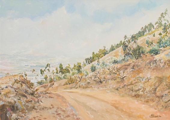Lomo del Púlpito (Los Rodeos).  Óleo sobre lienzo, 90,5 x 64 cm. Col. particular