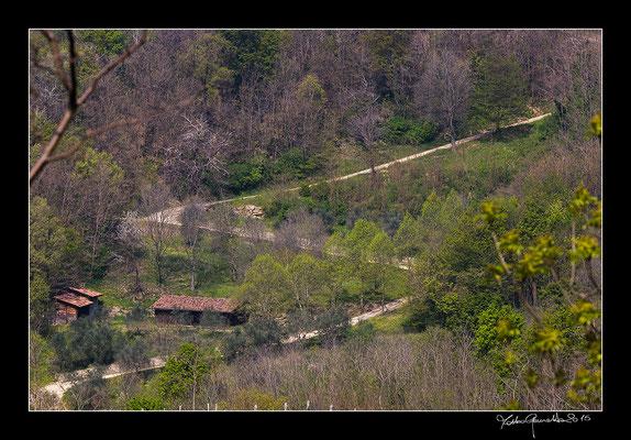 walking through the Colli Euganei