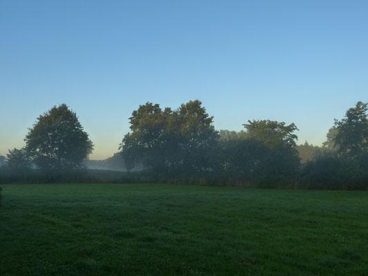 Dunst am Morgen