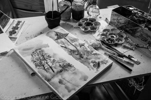 l'atelier aquarelle  @johanne gicquel oplurielle photo dessin crea