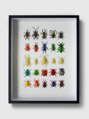 INSECTS TOYS