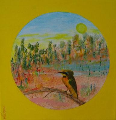 Bild Nr. 279, Format 30/30, Pirol, Preis Fr. 260.00