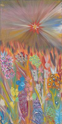 Bild Nr. 96, Format 50/100, Seltener Stern im Blumenmeer, Preis Fr. 850.00