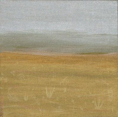 Bild Nr. 21, Format 30/30, Wüste, Preis Fr. 130.00
