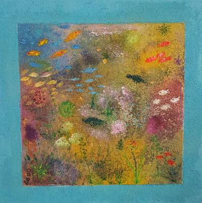 Bild Nr. 341, Format 50/50, Unterwasser, Preis Fr. 480.00