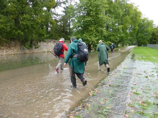 Non seulement il pleut, mais on nage (12H30)! RamMouillet Septembre 2015