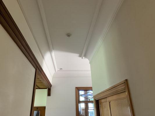 天井の柔らかな曲線が印象的