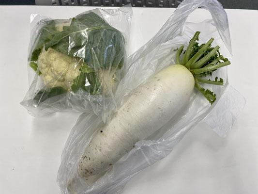 受講生さんのお母様が育てたお野菜を頂戴しました😂