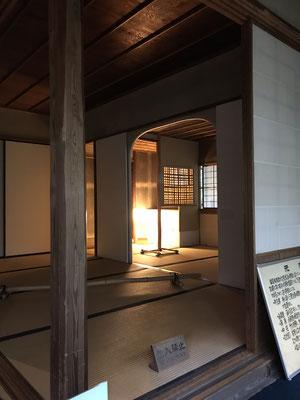 珍しい竹の床柱