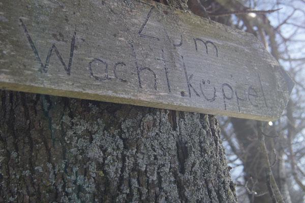 Auf dem Weg zum Wachtküppel in der Rhön