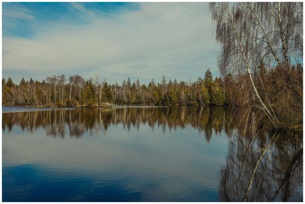 Der Vogelsee im Pfrunger-Burgweiler Ried 1808