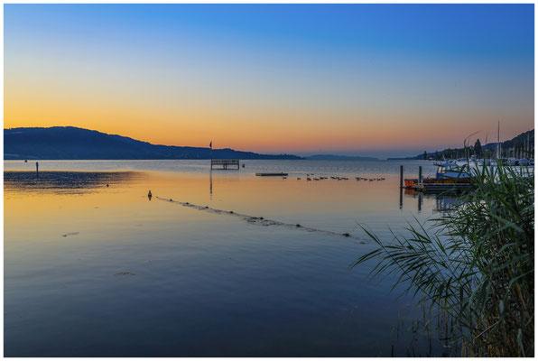 Blick auf den Überlinger See 0114