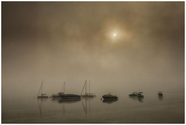 Boote im Jachthafen von Iznang im Nebel 3579