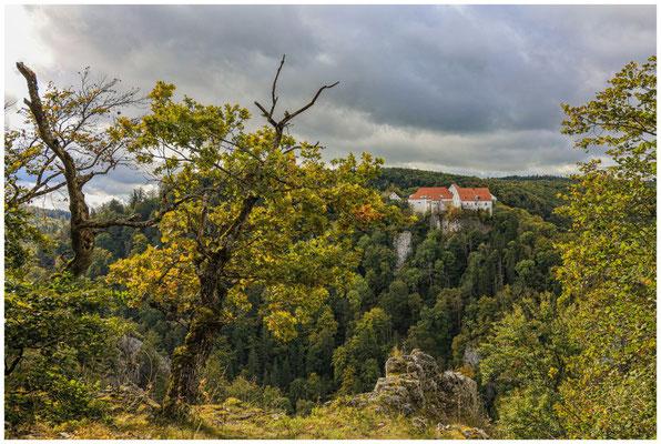Burg Wildenstein 8221