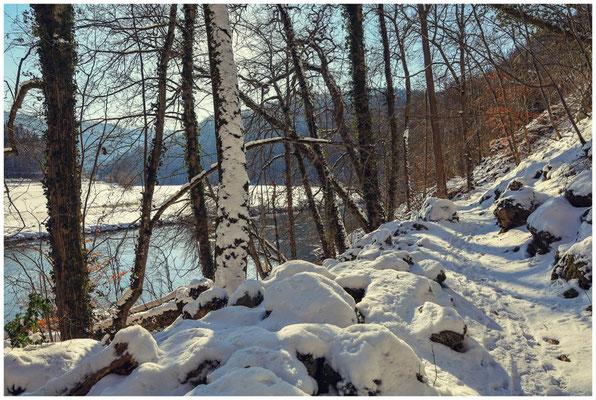 Wanderweg entlang der Donau 5813