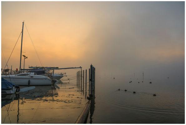 Morgendämmerung über dem Zeller See bei Moos 3481
