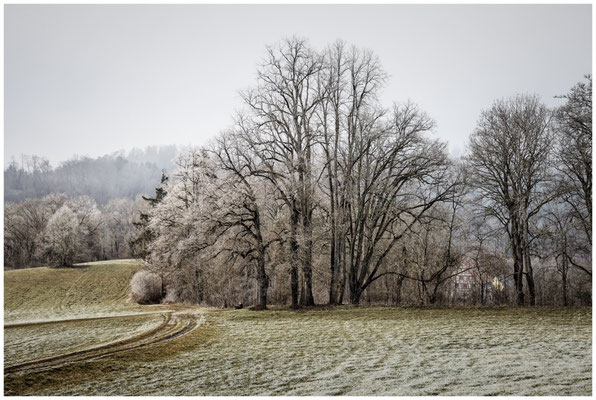 Winterlandschaft mit Holzbank bei Inzigkofen 1701