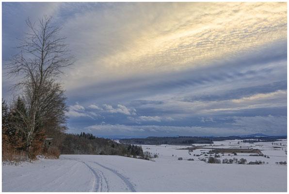 Blick auf das NSG Heudorfer Ried mit Hegaubergen 5705