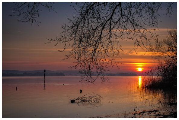 Sonnenaufgang im Jachthafen Iznang 3267