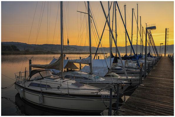 Morgendämmerung im Jachthafen von Bodman 3988