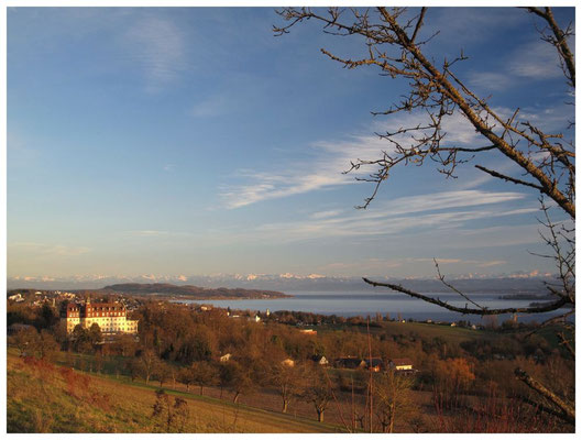 Überlinger See - links im Bild Spetzgart 6941