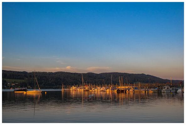 Schiffsanleger Hemmenhofen mit Yachthafen bei Morgenlicht 9803