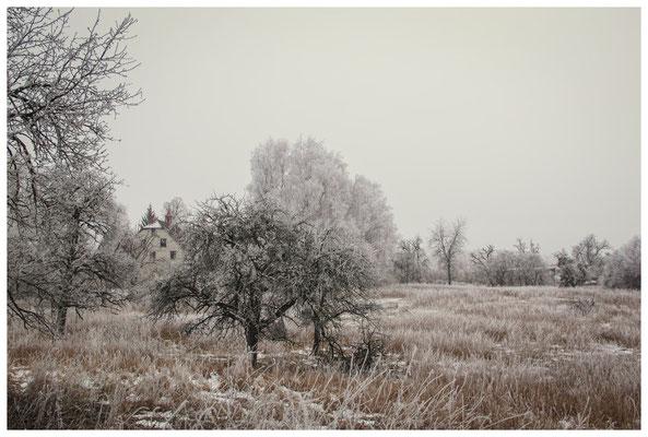 Winterlandschaft mit altem Bauernhaus bei Stockach 2499