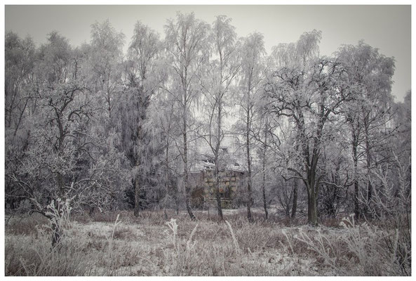 Winterlandschaft mit altem Bauernhaus bei Stockach 2479