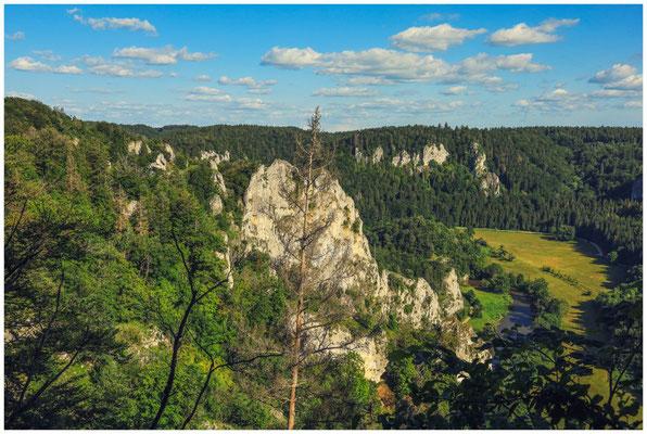 Blick auf den Stiegelesfelsen und die Donau 7947