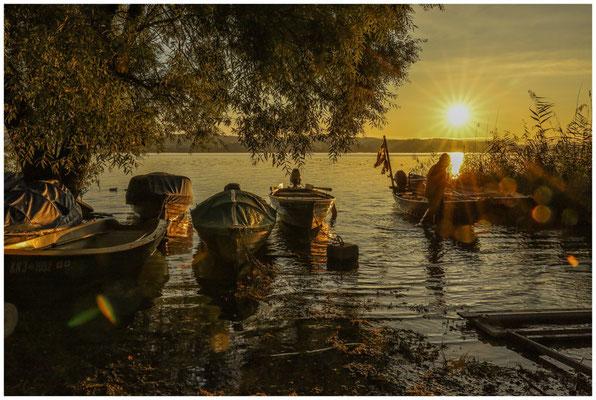 Sonnenaufgang auf der Insel Reichenau mit zurückkehrendem Fischer 0771