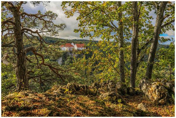 Burg Wildenstein 8216