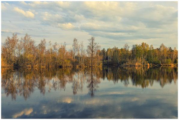 Uferlandschaft Nillsee 2243