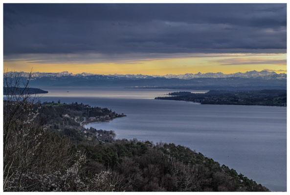 Blick vom Haldenhof über den Überlinger See und die Alpenkette 3849