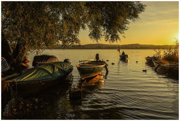 Sonnenaufgang auf der Insel Reichenau mit Fischerbooten 0766