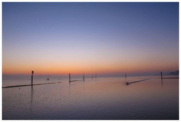 8384 Morgendämmerung am Bodensee bei Moos