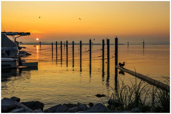 Sonnenaufgang über dem Zeller See 0532